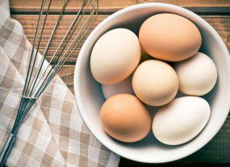Eggs: Care-Free, Free-Range or Pasture-Raised?