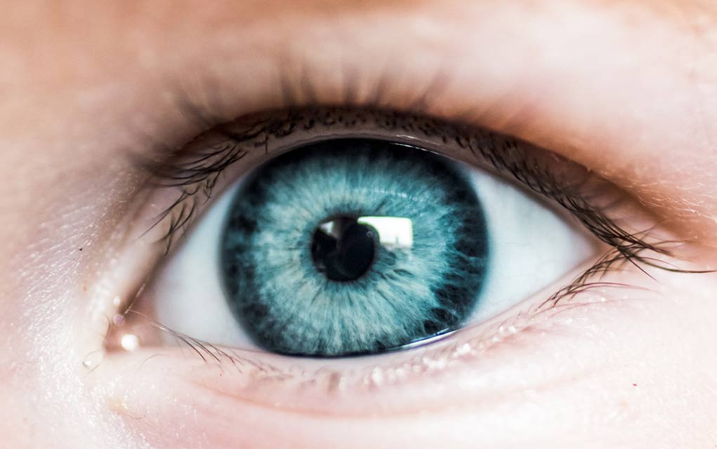 Eyes May Be an Early Indicator of Alzheimer's