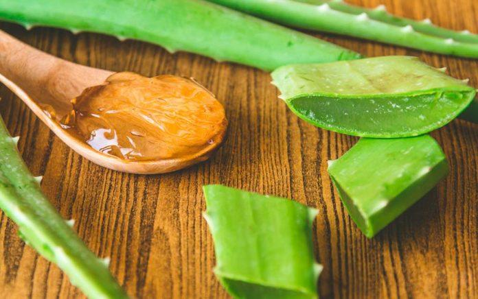 6 Amazing Benefits of Aloe Vera