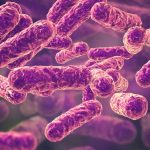 These Bacteria Are Everywhere: Could They Be Making You Sick?
