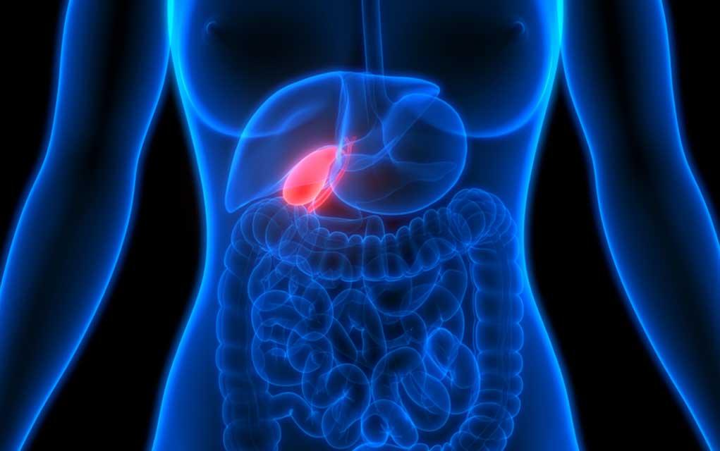 Gallbladder Health: 9 Surprising Signs Something Is Wrong